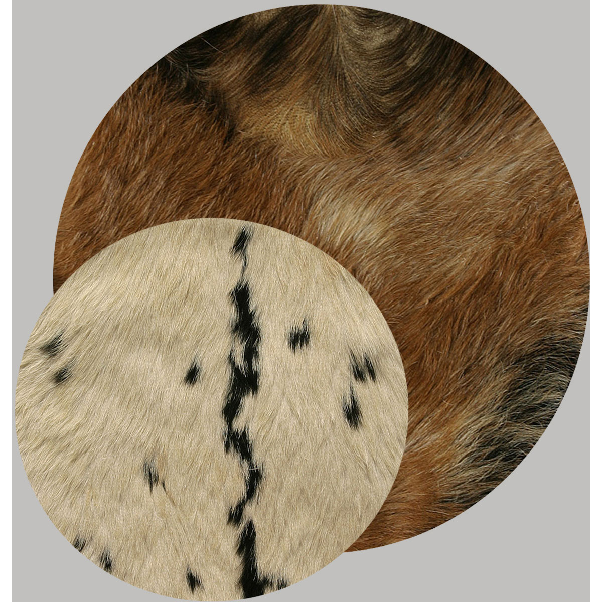 Goat Skin Drum Heads with Hair