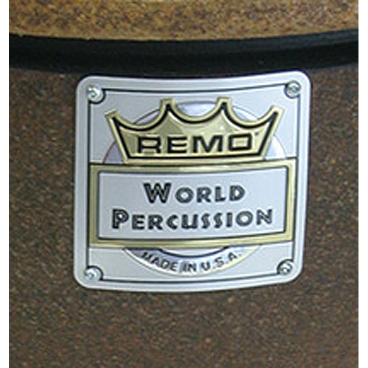 World Percussion by REMO